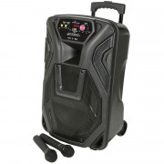 """View and buy QTX Busker 12"""" PA with VHF Mics, Media Player & Bluetooth (178.866UK) online"""
